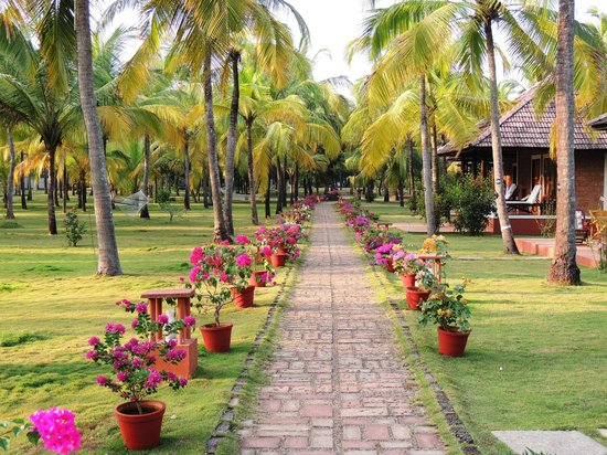 The Nattika Beach Resort:                   Hotel and Grounds