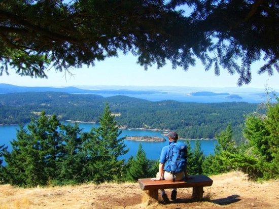 Otters Pond Bed and Breakfast: Walk on Turtleback Mountain