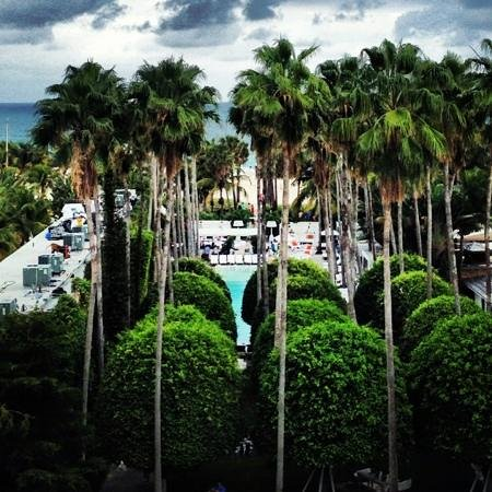 Delano South Beach: view from the room! simple beautiful
