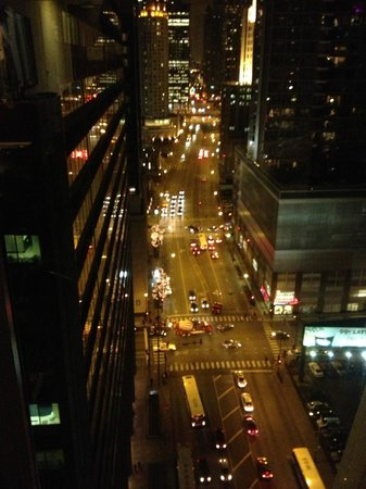 Doubletree by Hilton Chicago Magnificent Mile: view