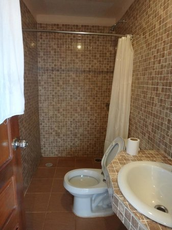 Tanei Guesthouse:                   very small shower