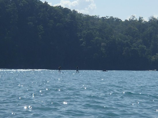 Dominical, Costa Rica: Paddle Boarding - one of many local activities