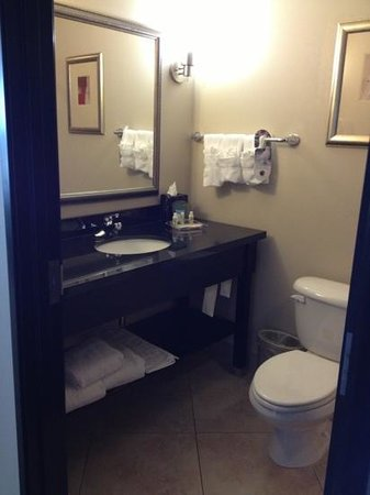 Holiday Inn Killeen-Fort Hood: lighting is bathroom is very poor however plenty of counter space