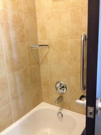 Holiday Inn Killeen-Fort Hood: awesome shower and amazing shower head