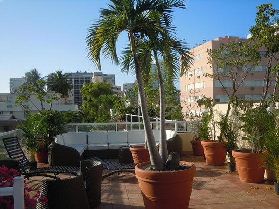 Coral Princess Hotel: Roof terrace