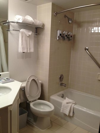 Four Points by Sheraton Detroit Metro Airport: Clean bathroom