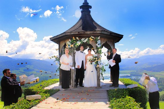 Hacienda Tayutic:                   The wedding and the butterflies