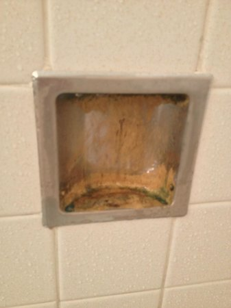 Alpine Valley Resort: 3 layers of mold in shower soap dish!