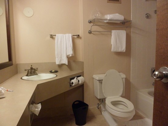 Sheraton Portland Airport Hotel: Sink Area
