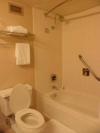 Sheraton Portland Airport Hotel: Bathroom