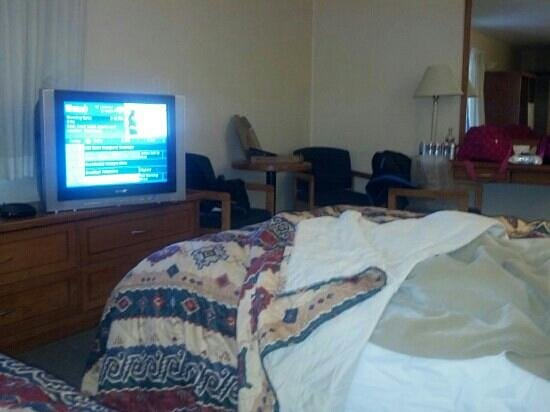 Travelodge City Centre:                   a lil dirty sorry but spacious