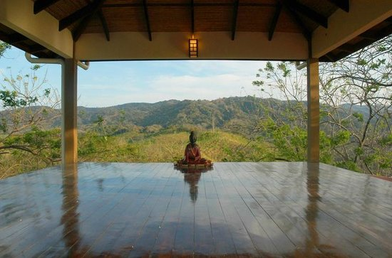 AHKi B&B Retreat:                   View from our yoga practice room/meeting space