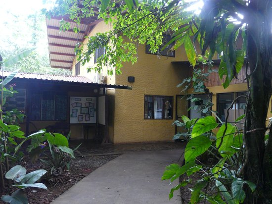 Tirimbina Lodge:                   The back of the Coquette rooms