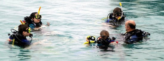Buddy Dive:                   Kids doing one of their open water sessions