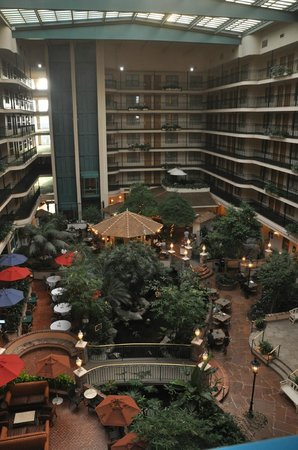 Embassy Suites by Hilton Anaheim North: View from 7th floor