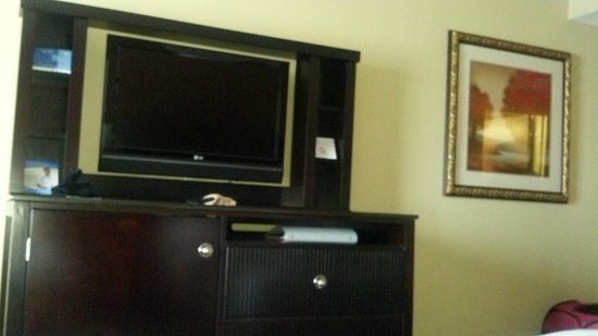 Holiday Inn Salisbury Downtown Area: tv
