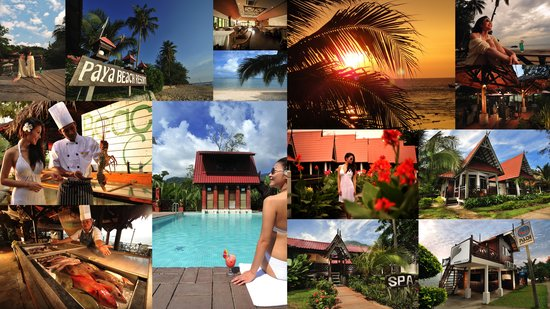 ‪‪Paya Beach Spa and Dive Resort‬: Paya Beach Spa and Dive Resort‬