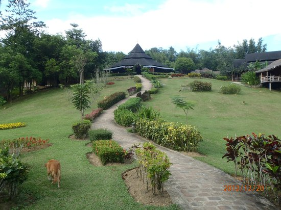 The Cliff & River Jungle Resort:                   view to reception