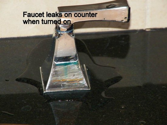 The Westin Governor Morris, Morristown:                   Leaking faucets - you didn't want to leave anything on the sink anyway