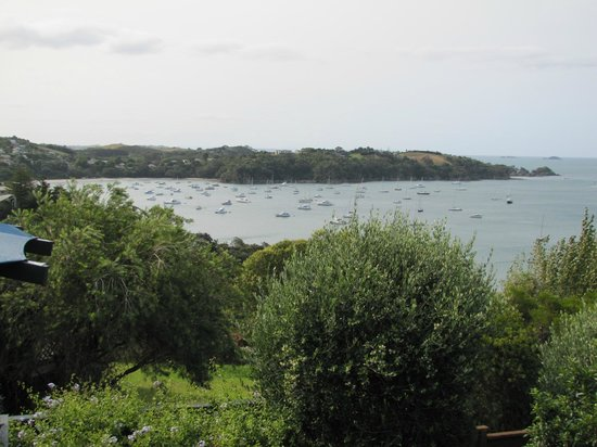 Tawa Lodge Waiheke Island: View from Room