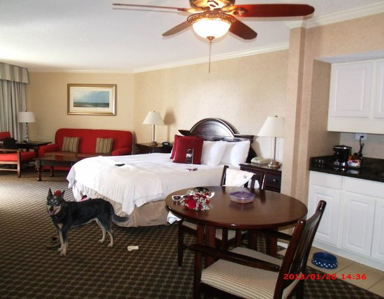 Omni Hilton Head Oceanfront Resort:                   room 220