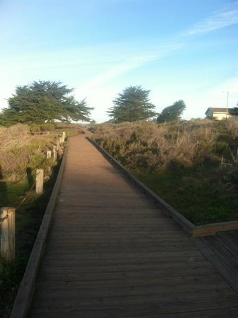 Cambria Landing Inn & Suites:                   the board walk—just accross the street