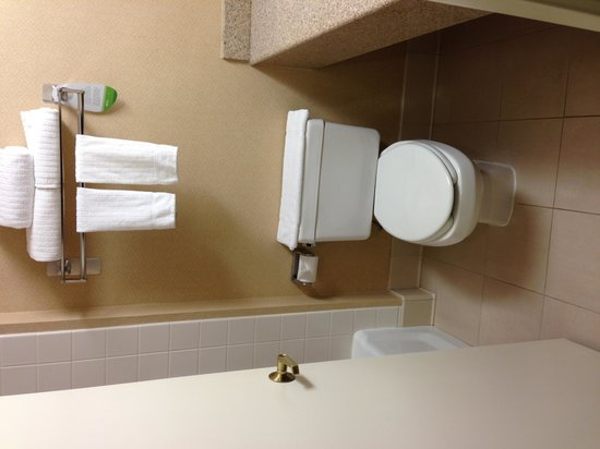 Courtyard by Marriott Nashua: Toilet