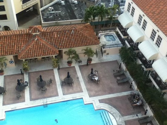 Hyatt Regency Coral Gables:                   Pool view
