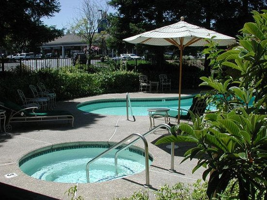 BEST WESTERN PLUS John Muir Inn: Swimming Pool