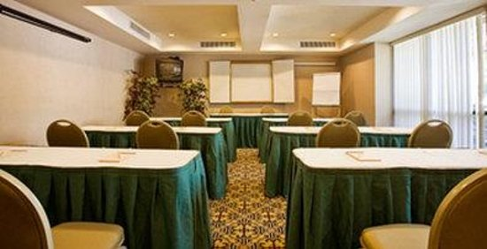 BEST WESTERN PLUS John Muir Inn: Meeting Room
