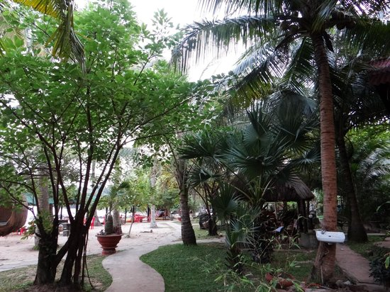 Mai Phuong Beach Resort:                   Resort