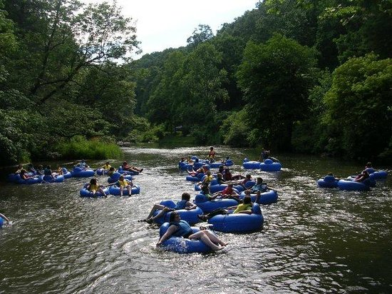 Tripadvisor tubing down the new river for New river nc fishing