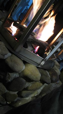 Bearskin Lodge on the River Hotel: Stay nice and warm here!