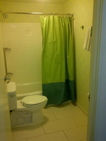 Springhill Suites Chicago Downtown / River North:                   Small bathroom, separate sink outside of here