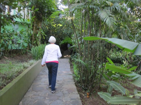 Hotel Finca Valverde: Beautiful paths
