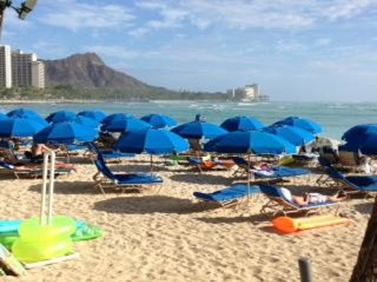 Outrigger Waikiki on the Beach:                   hotel umbrellas