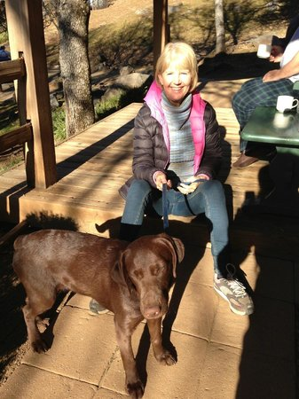 Homestead Cottages:                   This is 'Cindy' with pup: Spice...other owner/proprietor is Larry.