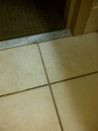 Hampton Inn &amp; Suites Lafayette :                   Dirty tile grout