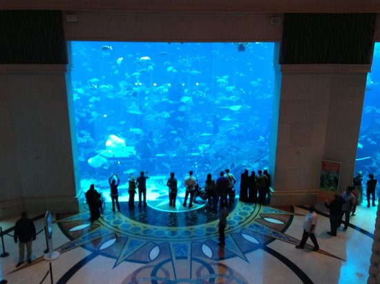 Atlantis, The Palm:                   Just a part of the hotel area.