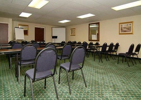 Comfort Inn North: Meeting Room