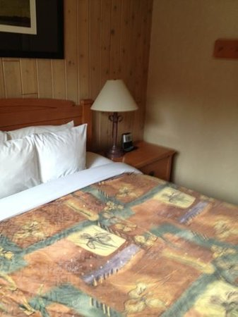 Hidden Ridge Resort: queen bed