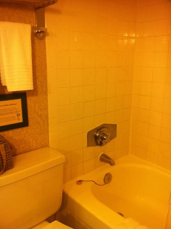 Delta Chelsea: Tub/shower