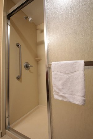Hampton Inn Hampton-Newport News: Bathroom