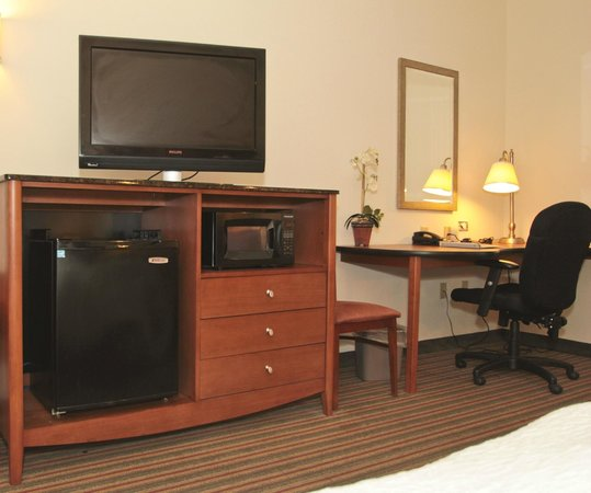 Hampton Inn Hampton-Newport News: Guest Room