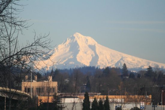 Hotel Fifty: View of Mt Hood from 3rd floor room