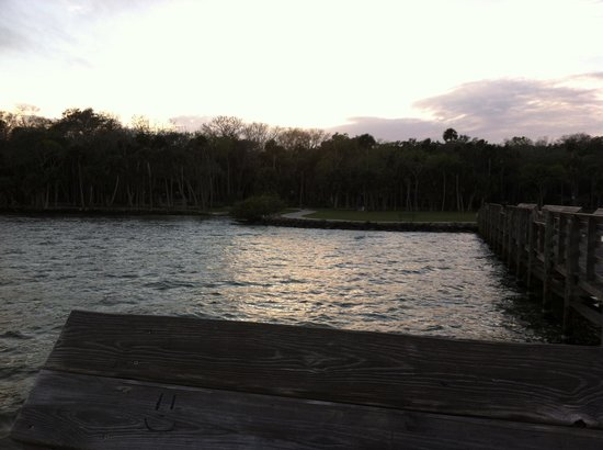 Manatee Hammock Campground: View from fishing pier
