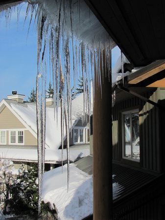 Greenwood Country Inn Bed and Breakfast: Growing Ice