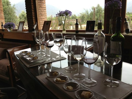 Wine Tours Valparaíso – Discovering The Colchagua Valley