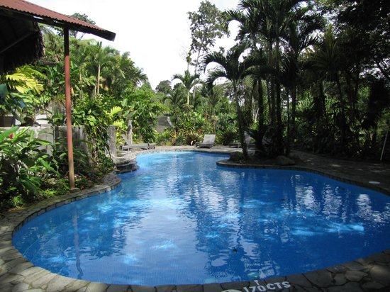 Lost Iguana Resort & Spa: Pool
