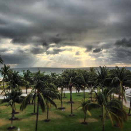 Edgewater South Beach: view from roof top terrace where one can get free beer and wine everyday at 5pm! 